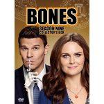 bones シーズン9 動画